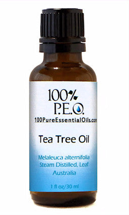 Pure Tea Tree Oil of Melaleuca alternifolia, 1 oz (30ml)