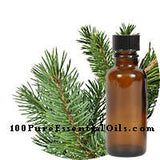 Bulk Fir Needle Essential oil 16 oz