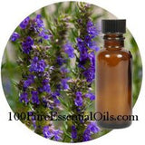 Where to buy Hyssop oil