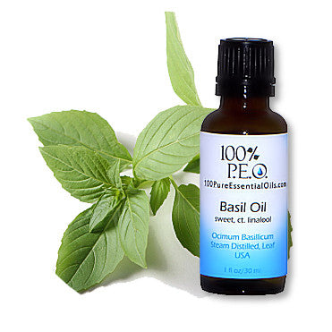 Buy Basil Essential Oil 1/2oz=>1 Gallon Wholesale