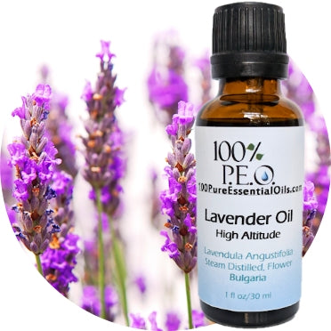 Buy Lavender Essential Oil, 1/2 oz => 1 Gallon Wholesale