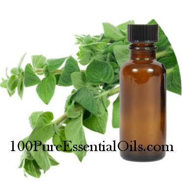 Buy Oregano Oil Gallon, Turkey