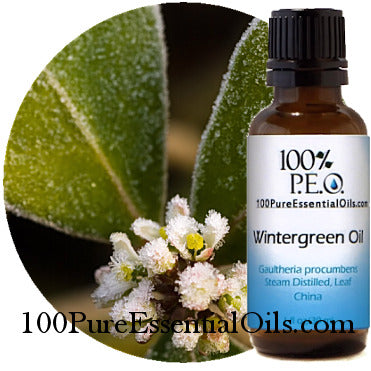 Wholesale Wintergreen Oil 1oz =>1 Gallon, Bulk