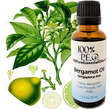 Buy Bergamot Essential Oil, 1/2 oz=> 1 Gallon, Bulk