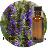 Buy Hyssop Oil , decumbens 1/2 oz => 32 oz Wholesale
