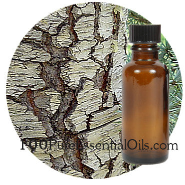 Buy Atlas Cedar oil, Bulk Gallon