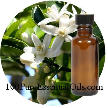 True Neroli Orange Flower Oil : Bulk 4, 8 & 16 oz