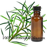 Australian Tea Tree Essential oil of Melaleuca Alternifolia, Wholesale