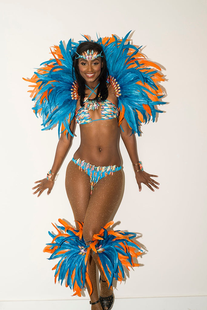 Blue bird two-piece carnival costume