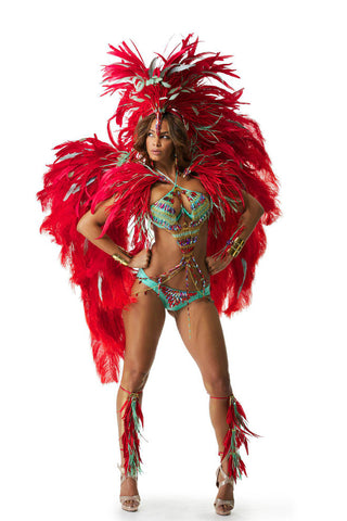 Red Tropical Bird Costume