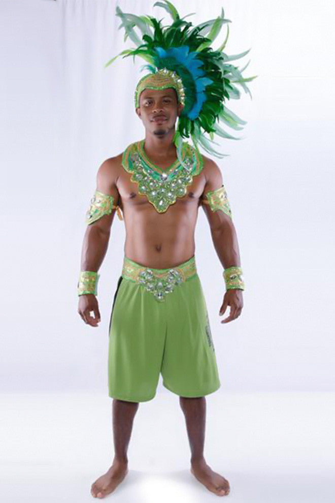 Chameleon Male Costume