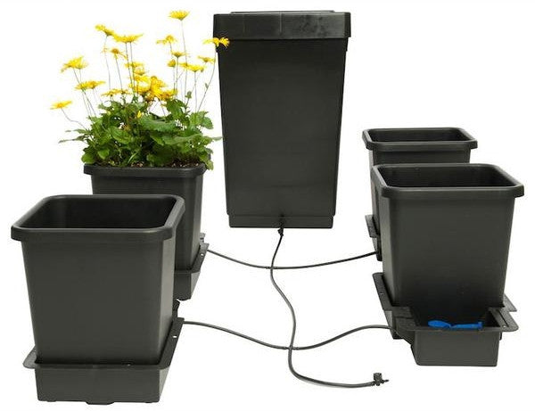 Autopot: One of the Best Self-Watering Hydroponic Systems