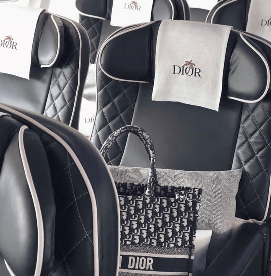 dior book tote in oblique print
