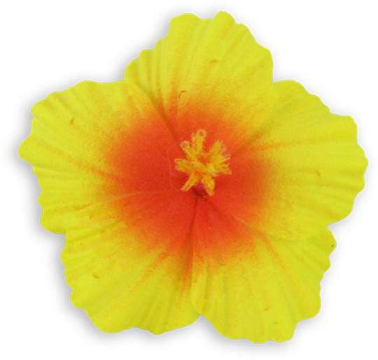 Yellow Orange Small Hibiscus Flower Hair Clip