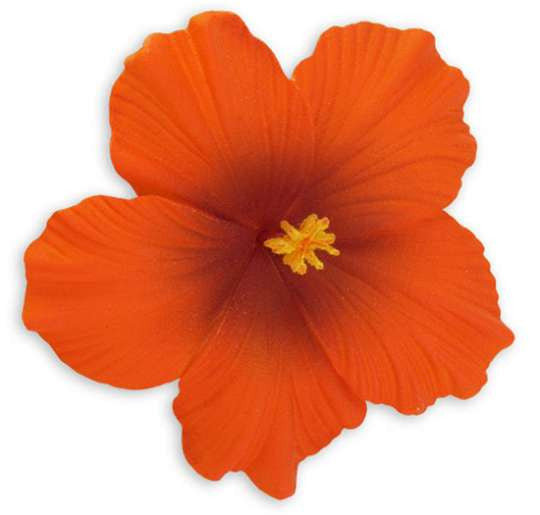 Large Orange Hawaiian Hibiscus Flower hair clip