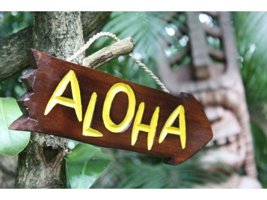 """Aloha"" Driftwood Sign 12"" - Pool Decor"
