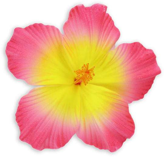 Pink Yellow Large Hibiscus Hawaiian Flower Hair Clip