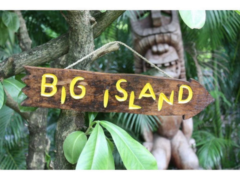 """Big Island"" Driftwood Sign 20"" - Pool Decor"