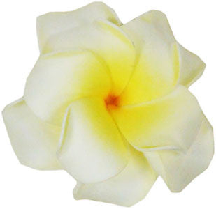 Natural Color Large Double Plumeria Flower Hair Clip