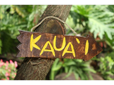 """Kauai"" Driftwood Sign 12"" - Pool Decor"