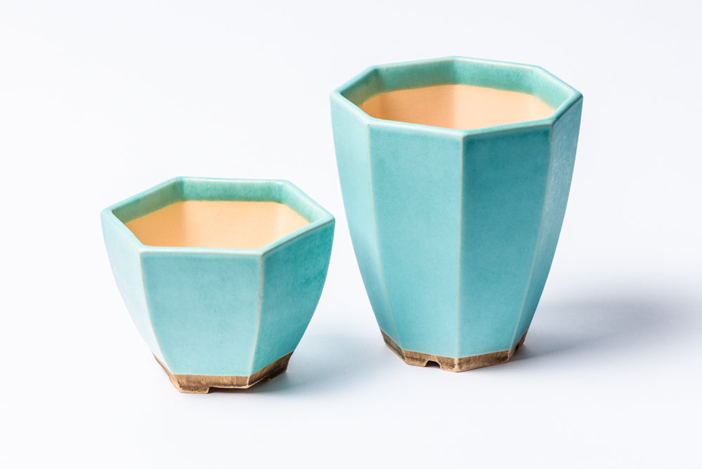 Blue succulent pots set of 2 - 1