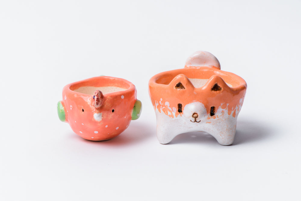 Chicken and Dog succulent pots set - 1