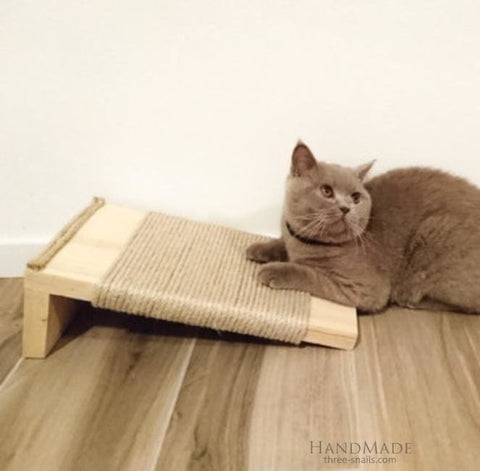 Cat Scratch Pad Cat Kingdom - Vasylchenko1
