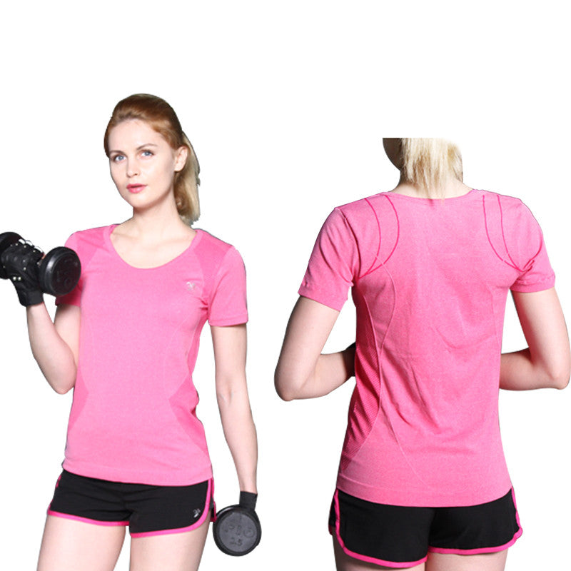Womens Quick Dry Gym Sports T-shirt