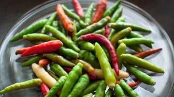 Birdseye Chilli the red gem of South East Asia