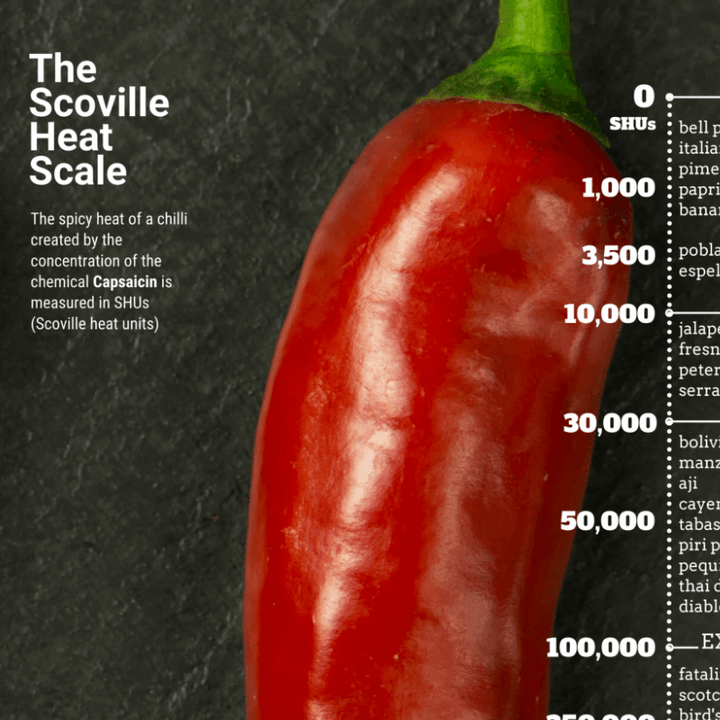 ChilliBOM Scoville Heat Scale SHU Poster A2 Hot Sauce Club Australia