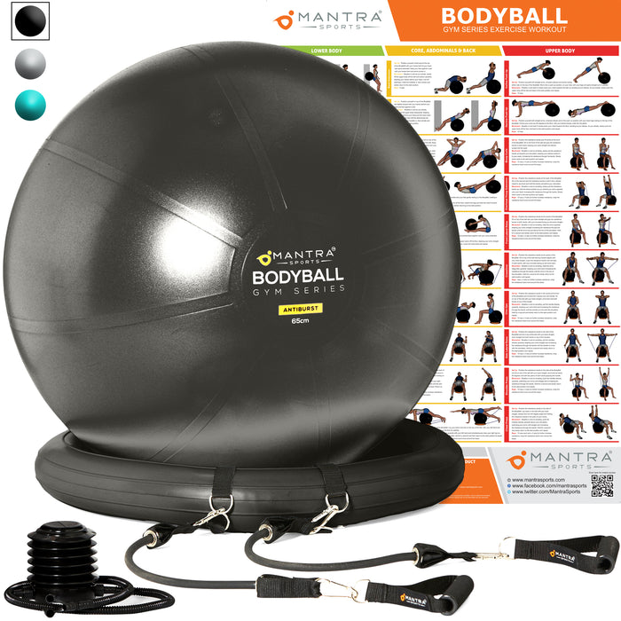 Exercise Ball Chair & Complete Home Gym System - Improves Balance, Core Strength & Posture