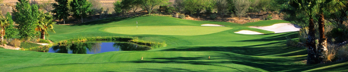 Golf club rental Las Vegas banner