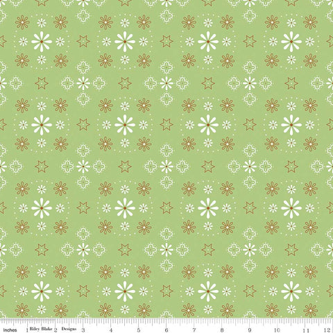Bee Basic - Green Bandana Backing by Lori Holt (WB6420R-Gree)