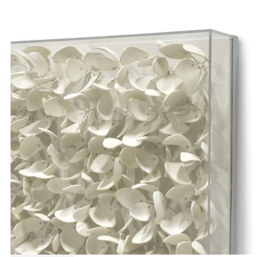 White Petals Artwork