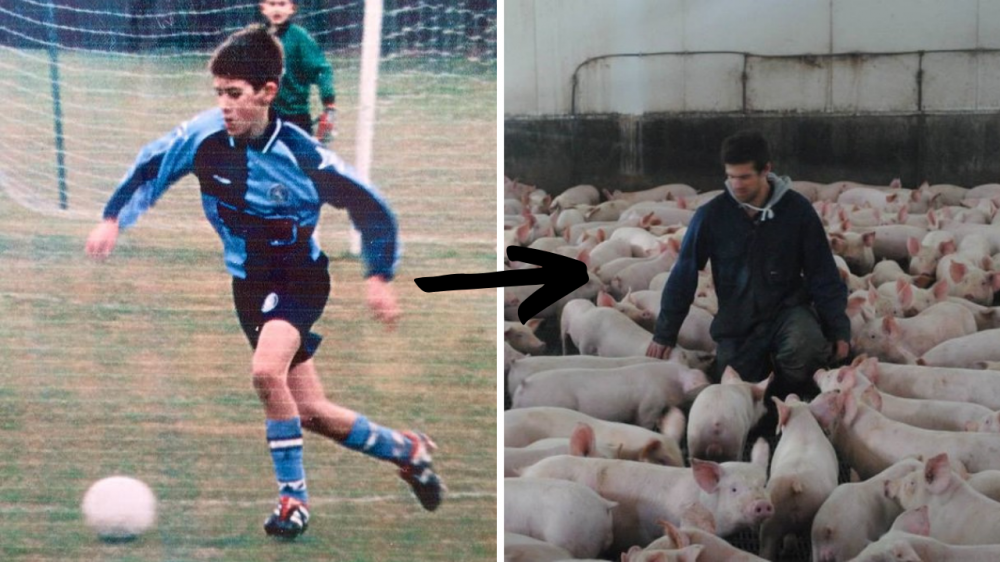Pro Football To Pig Farmer