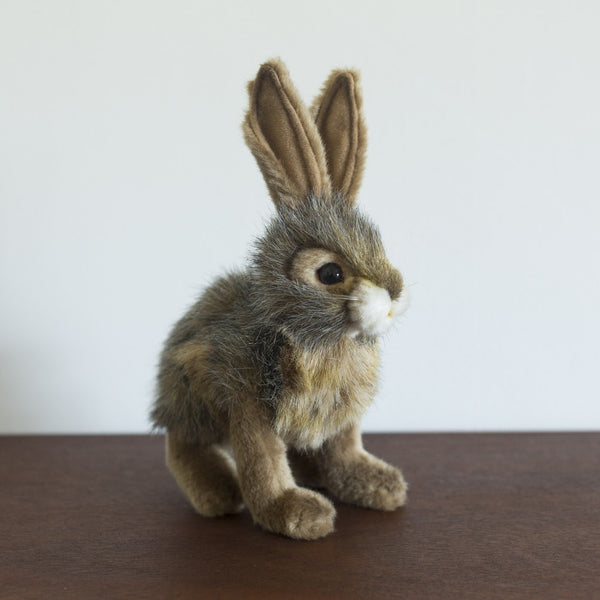 Jack Rabbit Stuffed Animal