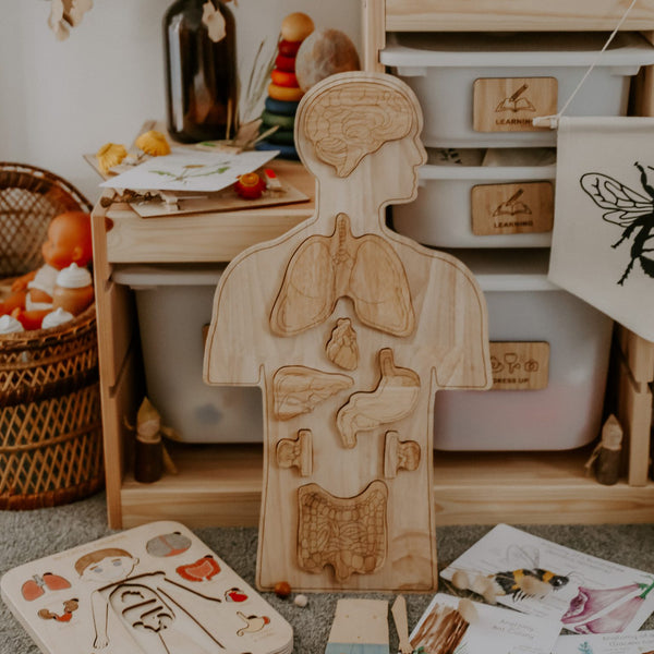Wooden Anatomy Educational Toy