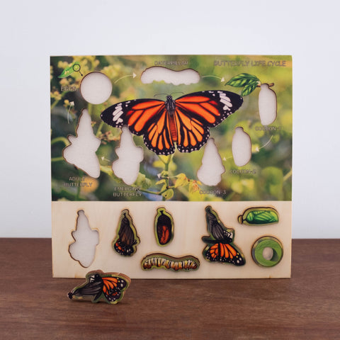 3D Wooden Puzzles- Butterfly Phases