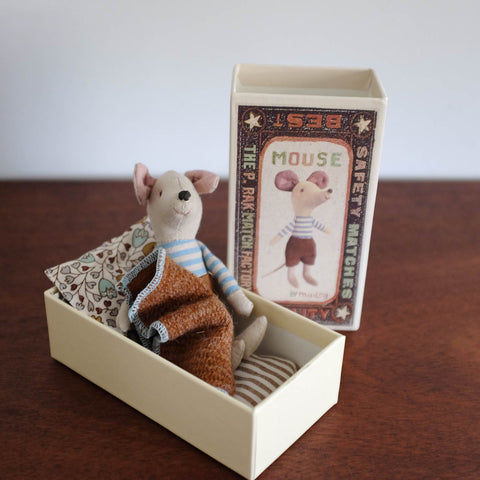 Big Brother Brown Mouse in a Box