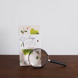 Magnifying Glass Nature Kit