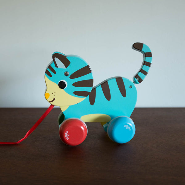 Marcel the Cat Pull Toy