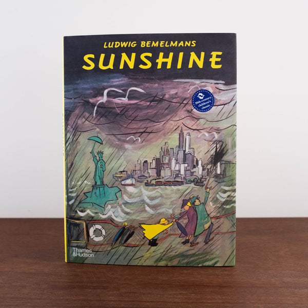 Sunshine Book: A Story about New York City