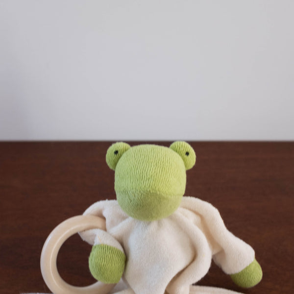 Nanchen Cuddle Doll Stroller Toy and Soothie- Frog