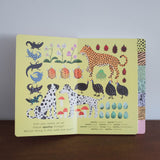 Pattern-Tastic Treasure Hunt Book