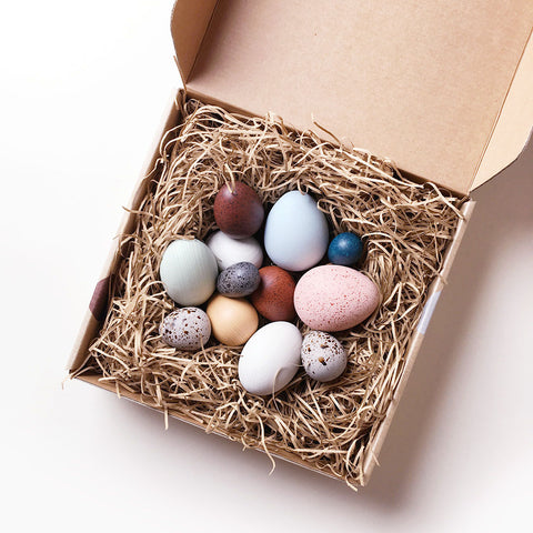 A Dozen Bird Eggs in Box Set