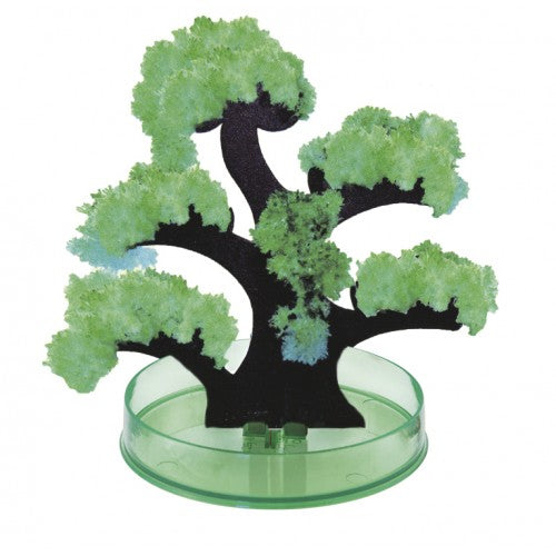 The Magic Tree Crystal Growing Kit