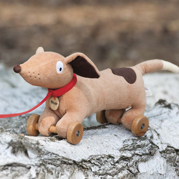 Wooster Dog Pull Toy