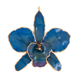Blue<br>Real Cattleya Orchid Ornaments<br>Trimmed in Gold<br>Orchid Ornament Only - GoldRoses.com