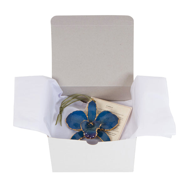 Blue<br>Real Cattleya Orchid Ornaments<br>Trimmed in Gold<br>Gift Boxed - GoldRoses.com