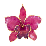 Fuchsia<br>Real Cattleya Orchid Ornaments<br>Trimmed in Gold<br>Ribbon and Hang Tag - GoldRoses.com